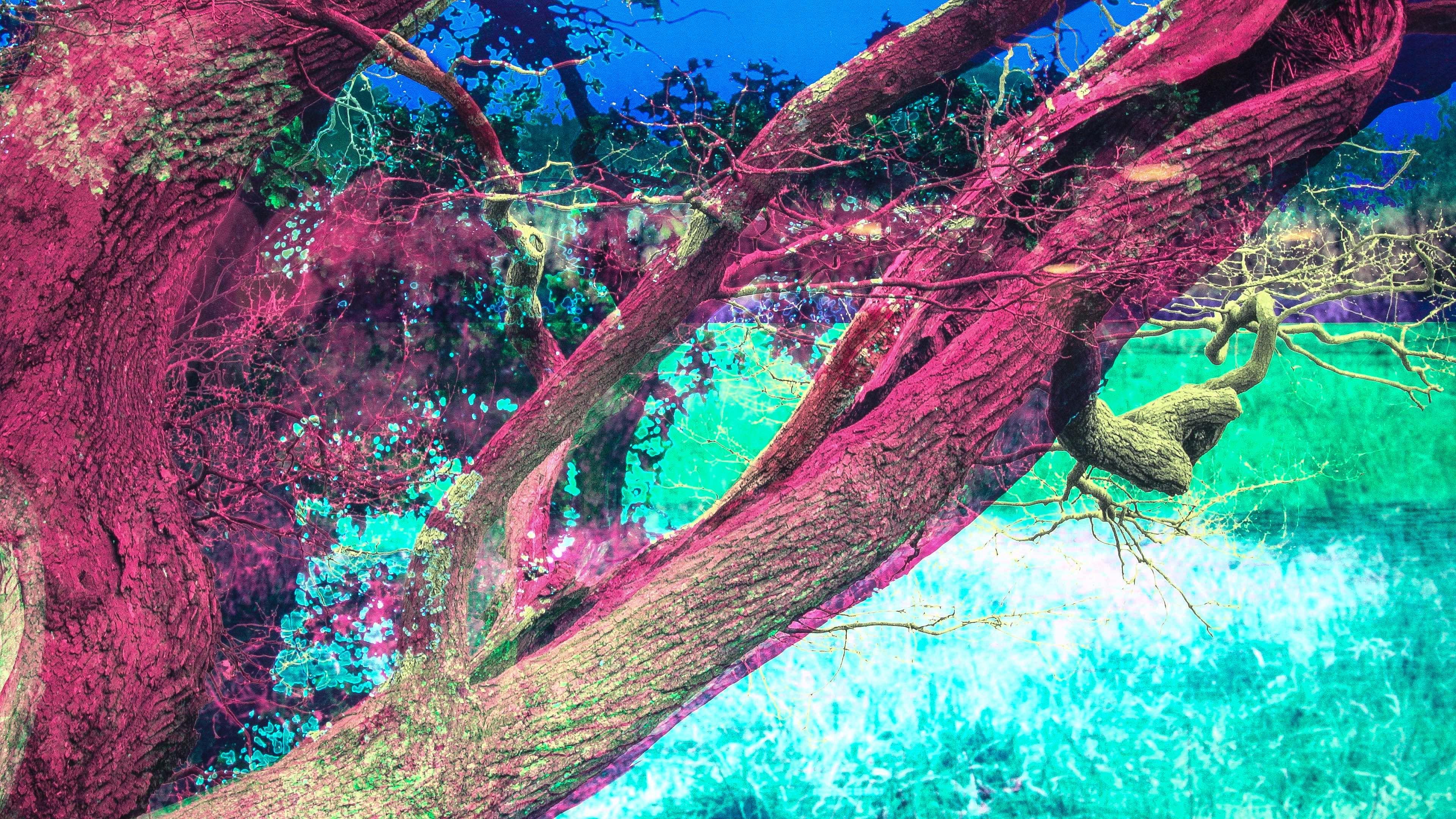 Natureally-Enschede-14